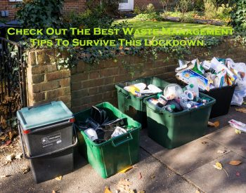 Check Out The Best Waste Management Tips To Survive This Lockdown